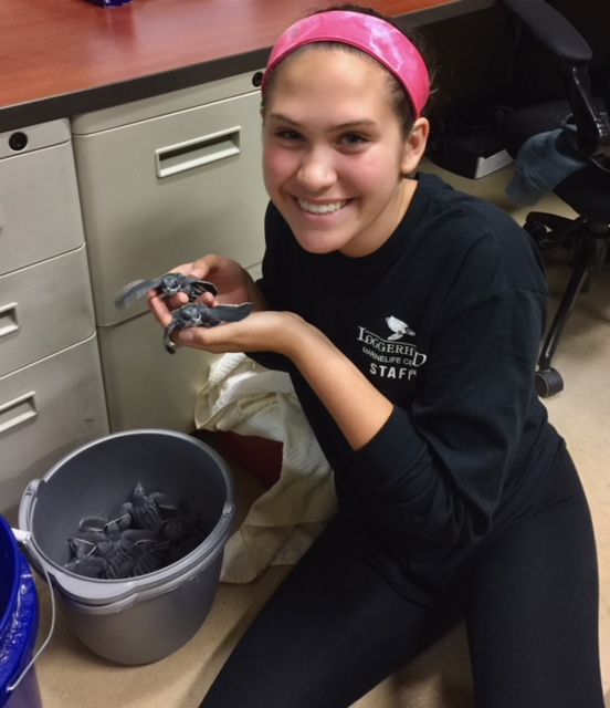 Madison holds up baby sea turtles at Dr. Cray